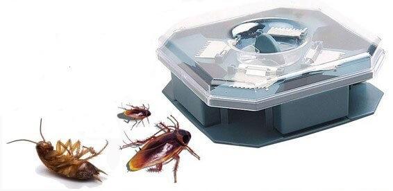 Механические ловушки для тараканов