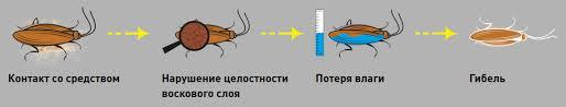 как работает экокиллер
